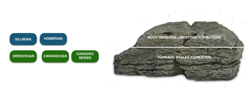Wenlock Quarry.jpg