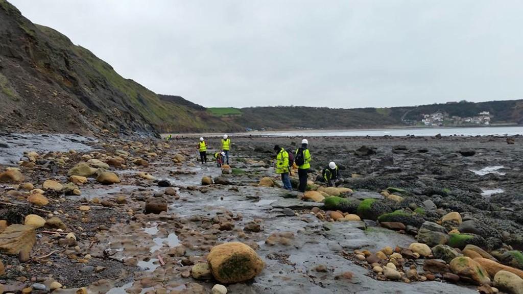 Fossil Hunting at Runswick Bay