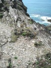 Scree at base of hillock