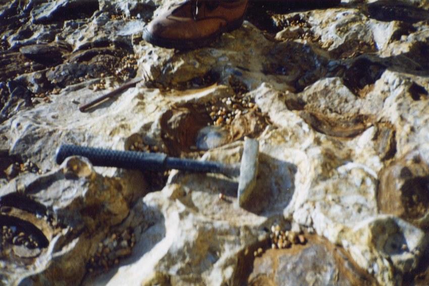 Bridport 1995.jpg