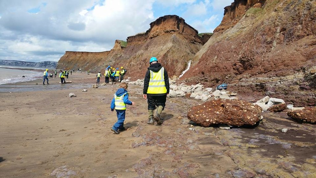 Fossil Collecting at Compton Bay