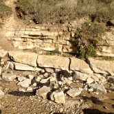 Osmington Oolite Formation exposed at Pirate Cove