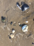 Portmarnock beach (15)
