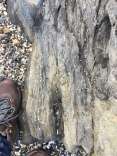 Portmarnock beach (18)