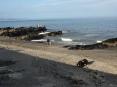 Portmarnock beach (26)